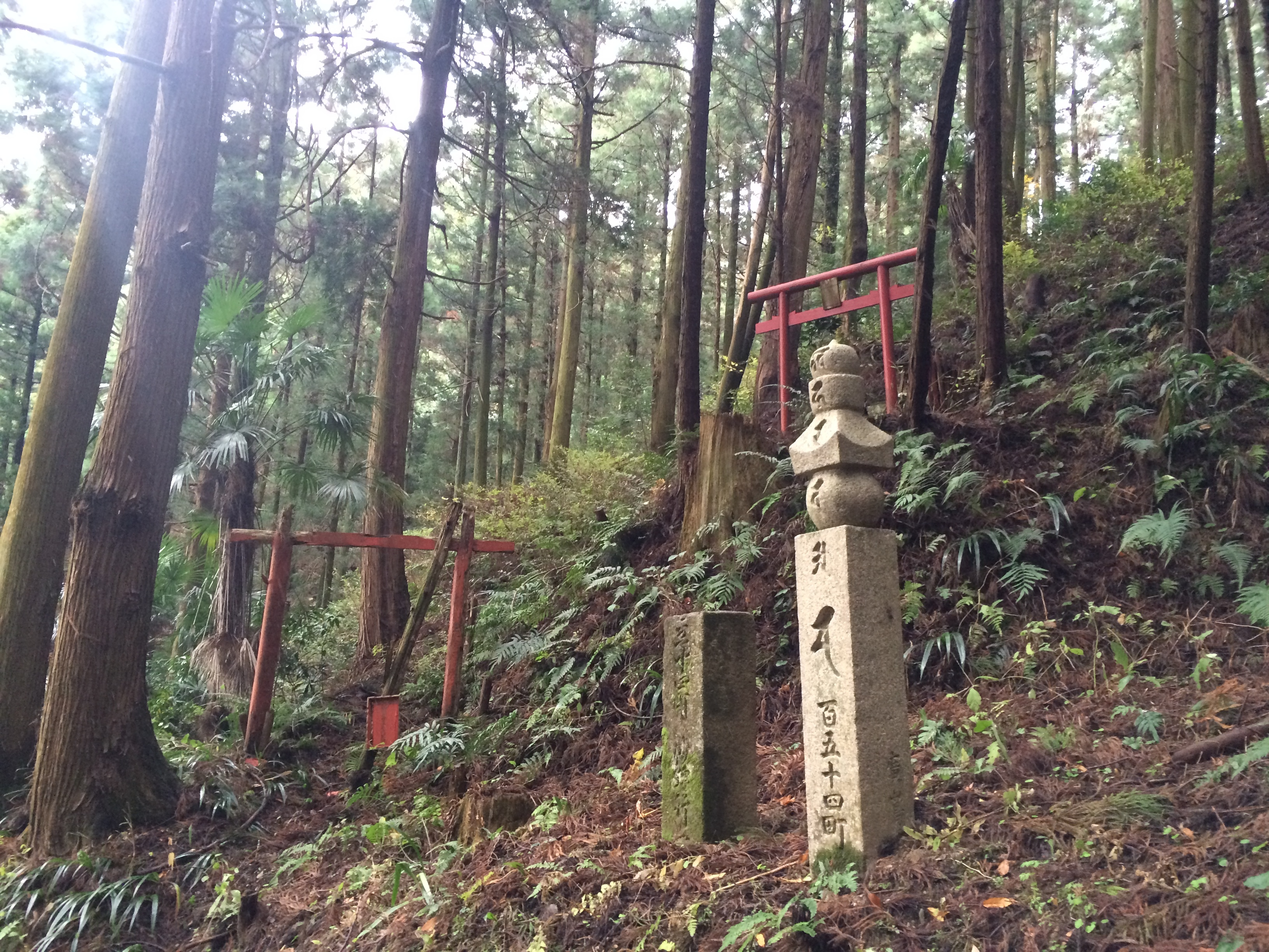 third essay of astrid eighth trainee of gr uuml nwald foundation the first of 180 stone pillars are standing in jison in temple in kudoyama and mark the starting point of the trek in the edo period a choishi was set up